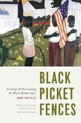 Black Picket Fences By Pattillo, Mary